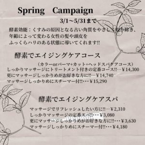 Spring Campaign!